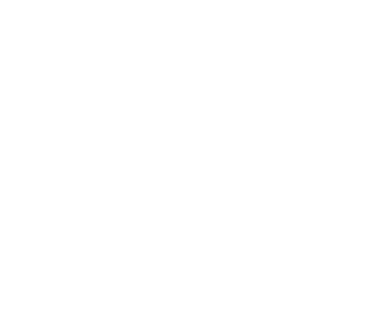 Fintraffic ensisijainen logo valkoinen